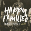 Studies in the life of David
