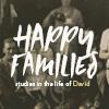 Studies in the life of David